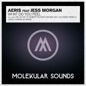 Aeris Feat Jess Morgan - What Do You Feel (relocate Vs. Robert Nickson Banging Remix) on Revolution Radio