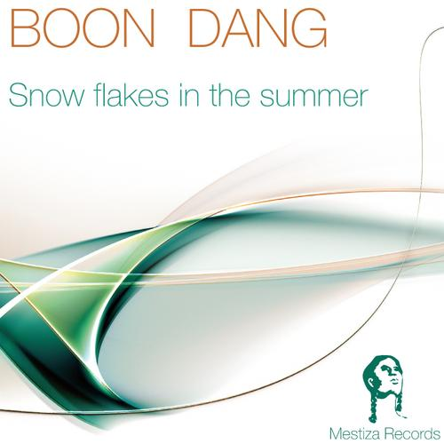 Boon Dang - Snow Flakes In The Summer (original Mix) on Revolution Radio