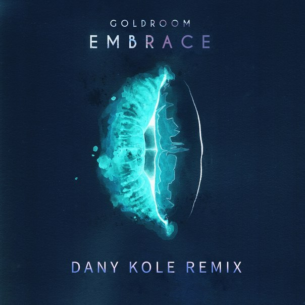 Goldroom - Embrace (dany Kole Remix) on Revolution Radio