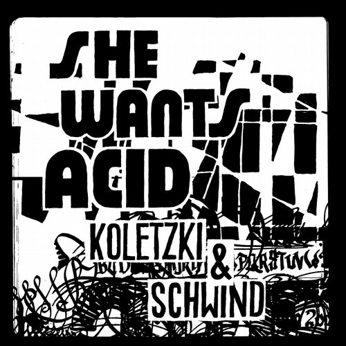 Koletzki And Schwind - Fake Return (original Mix) on Revolution Radio