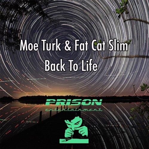 Moe Turk Fat Cat Slim - Back To Life (original Mix) on Revolution Radio