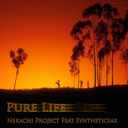 Nekachi Project - Pure Life (original Mix) on Revolution Radio
