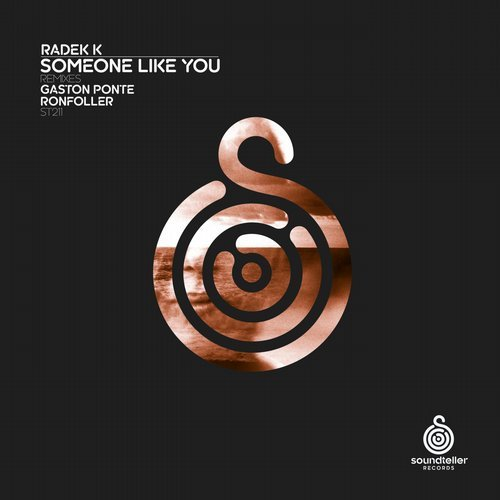 Radek K - Someone Like (ronfoller Remix) on Revolution Radio