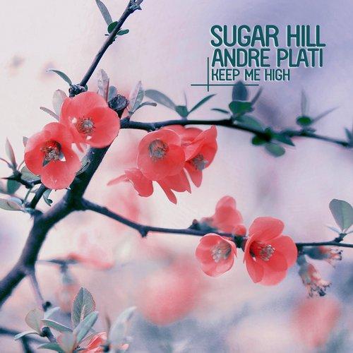 Andre Plati, Sugar Hill - Feel The Way I Feel (original Mix) on Revolution Radio