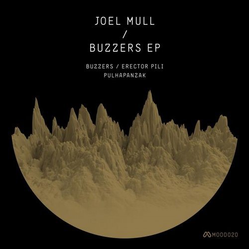 Joel Mull - Pulhapanzak (original Mix) on Revolution Radio