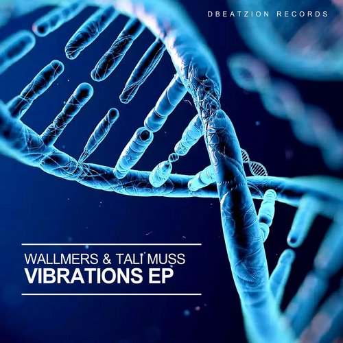 Tali Muss, Wallmers - Vibrations (original Mix) on Revolution Radio