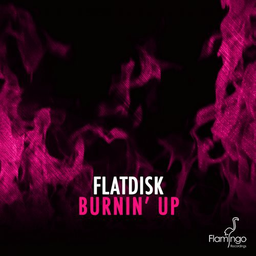 Flatdisk — Burnin' Up(original Mix) on Revolution Radio