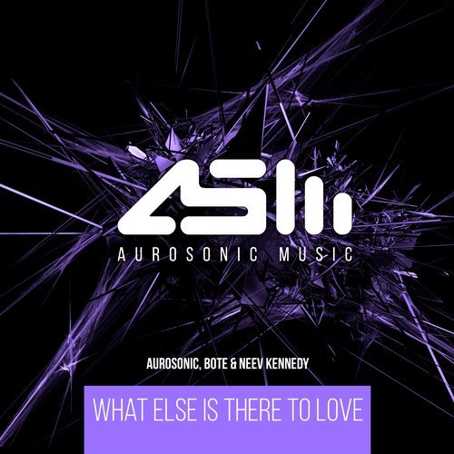 Aurosonic, Bote And Neev Kennedy - What Else Is There To Love (extended Mix) on Revolution Radio