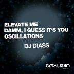 Dj Diass - Damn I Guess Its (original Mix) on Revolution Radio