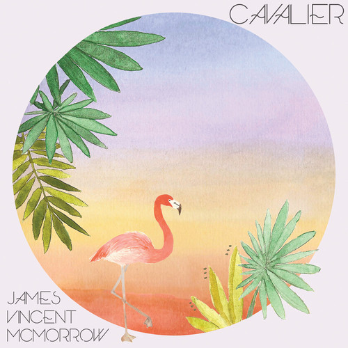 James Vincent Mcmorrow - Cavalier (branded James And Young Steezie Remix) on Revolution Radio