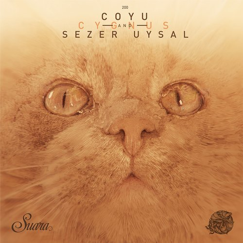 Coyu And Sezer Uysal – Cygnus (original Mix) on Revolution Radio