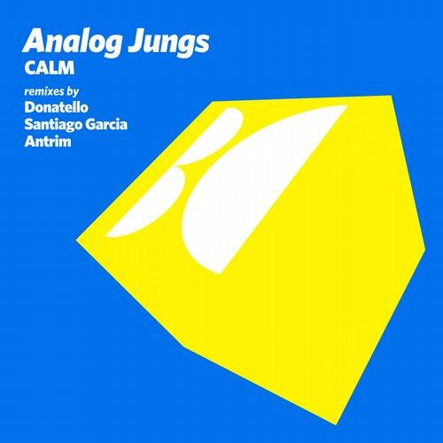 Analog Jungs - Calm (donatello Remix) on Revolution Radio