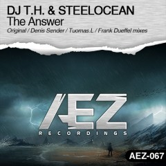 Dj T.h. And Steelocean - The Answer (frank Dueffel Remix) on Revolution Radio