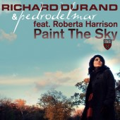 Richard Durand And Pedro Del Mar Feat Roberta Harrison  -  Paint The Sky (tom Cloud Remix) on Revolution Radio