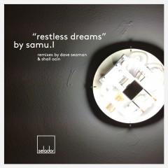 Samu.l - Restless Dreams (dave Seaman Remix) on Revolution Radio